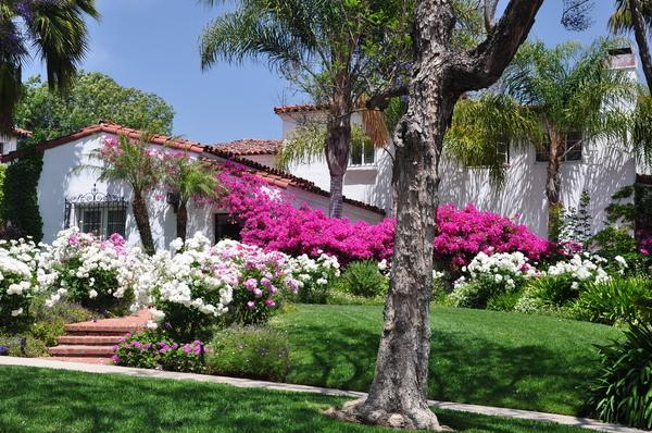- Southwest Landscaping Design